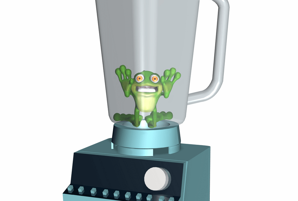 Frog in a Blender – the Game, the Joke, the Drink